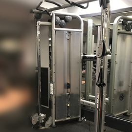 Life fitness Dual adjustable pulley